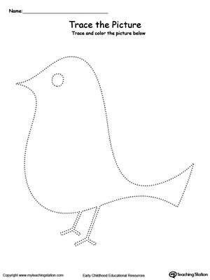Bird Picture Tracing