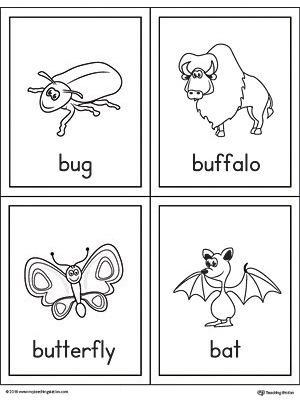 Beginning sound vocabulary cards for letter B, includes the words bug, buffalo, butterfly, and bat.