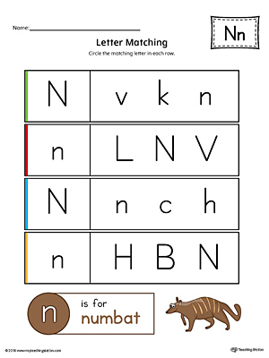 Use the Letter N Uppercase and Lowercase Matching Printable Worksheet to help your preschooler to match upper to lowercase letters.